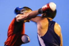 Мемориальный турнир Danijel Kalanj бокса стоковые фото