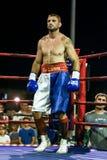 Мемориальный турнир Danijel Kalanj бокса стоковая фотография rf