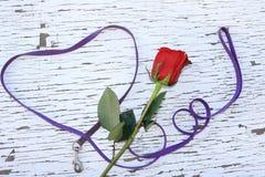 Мемориал любимого любимчика Стоковая Фотография RF