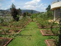 мемориал Руанда геноцида garde Стоковое Изображение RF
