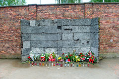 Мемориал на стене смерти в Освенциме Стоковые Фотографии RF