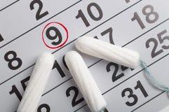 Менструальный календарь с тампонами и пусковыми площадками Цикл менструации Гигиена и защита стоковые изображения rf