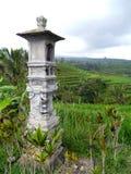 Меньшая буддийская святыня на затворе риса Стоковые Изображения RF