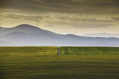 Меньшая дорога между 2 полями стоковое изображение