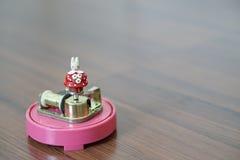 Меньшая коробка музыки зайчика Стоковое фото RF