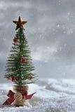Меньшее дерево с предпосылкой снега Стоковая Фотография RF
