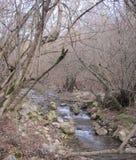 меньшее река горы Стоковая Фотография