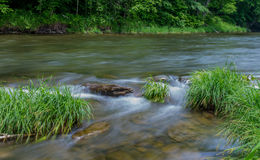 Меньшее река Beaverkill - известный поток форели в Нью-Йорке Стоковые Фото