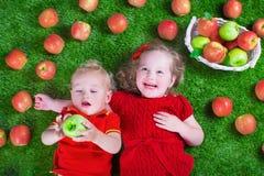 Меньшее childrenl есть яблока Стоковые Изображения RF