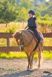 Меньшее horserider Стоковое фото RF