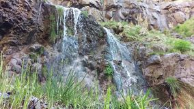 Меньшее Lost Creek падает весна сток-видео