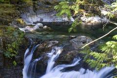 Меньшее Qualicum понижается захолустный парк, ДО РОЖДЕСТВА ХРИСТОВА, Канада стоковое изображение