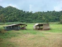 Меньшие сараи на зеленом поле в долине Стоковое фото RF