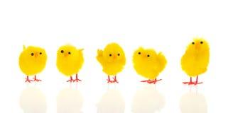 Меньшие цыпленоки пасхи стоковые фото
