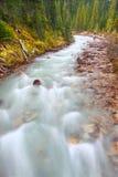 Меньшие Rapids Канада реки Yoho Стоковая Фотография