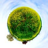 Меньший взгляд планеты зеленого и желтого цветя поля Стоковые Изображения