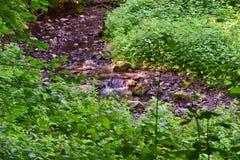 Меньший водопад в лесе в долине в Венгрии стоковое фото
