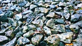 Меньший камень Стоковые Изображения RF