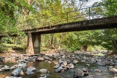 Меньший конкретный мост над Rill в лесе стоковые фотографии rf