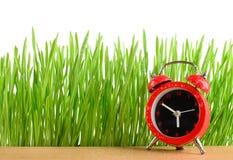 Меньший красный будильник на изолированных столе и влажной зеленой траве Стоковое Изображение