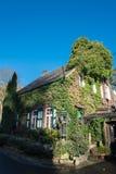 Меньший дом кирпича с плющом в солнце Стоковые Изображения RF
