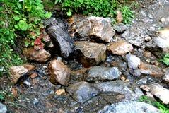 Меньший поток с камнями Стоковая Фотография