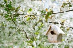 Меньший Birdhouse весной с цветком Сакурой вишни цветения Стоковые Изображения RF