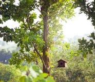 Меньший birdhouse в лете стоковая фотография rf
