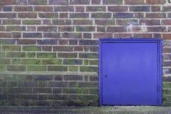 Меньшяя голубая дверь Стоковые Фотографии RF