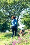 Мероприятия на свежем воздухе для женщины и собаки Стоковые Фото