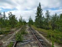Мертвая железная дорога в Сибире стоковое изображение