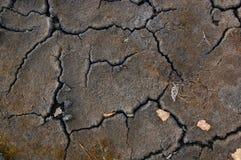 мертвая земля Стоковое Изображение RF
