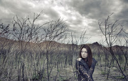 мертвая потерянная земля Стоковое фото RF