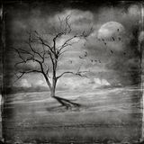 Мертвое дерево в неурожайном ландшафте пустыни Стоковая Фотография
