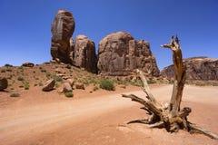 Мертвое дерево и горная порода в долине памятника, США Стоковое Изображение RF