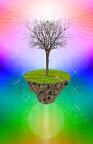 Мертвое дерево на красочной предпосылке. Стоковые Фото