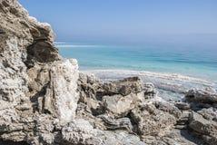 Мертвое море и черная грязь стоковое фото rf