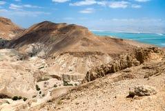 мертвое море пустыни Стоковые Фотографии RF