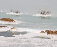 мертвое море соли Стоковая Фотография RF