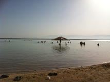 Мертвое море Стоковые Изображения RF