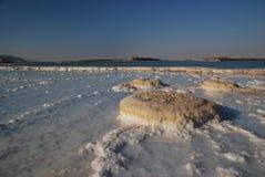 мертвое море стоковая фотография rf