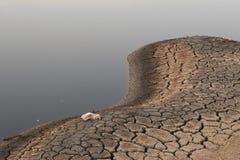 мертвое озеро Стоковое Фото