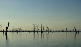 Мертвое озеро Стоковые Изображения