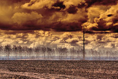 мертвое поле непригодное Стоковое Фото