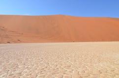 Мертвое Vlei в пустыне Namib, Намибии Стоковая Фотография