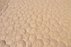 Мертвое Vlei в пустыне Namib, Намибии Стоковые Изображения RF