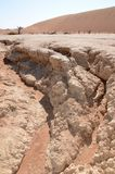 Мертвое Vlei в пустыне Namib, Намибии Стоковое Изображение