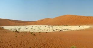 Мертвое vlei в пустыне namib Стоковое Изображение