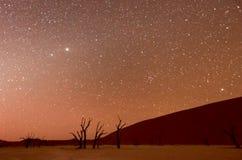 Мертвое Vlei, Намибия на сумраке Стоковая Фотография