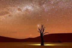 Мертвое Vlei, Намибия на сумраке Стоковые Фотографии RF